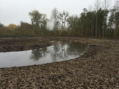 Création d'une zone humide - Marais de Sacy-le-Grand